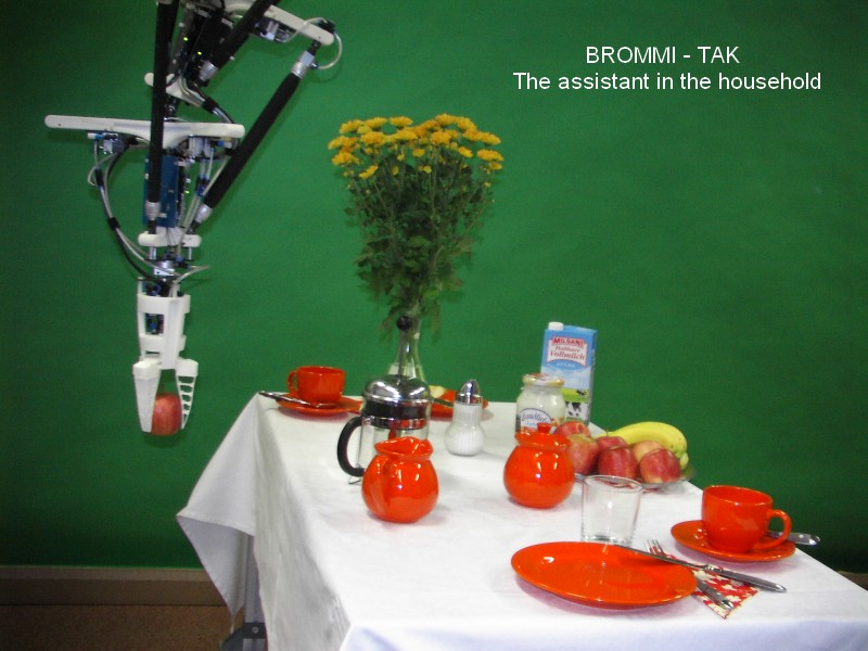"""BROMMI:TAK the assistant in the household, 2013."""